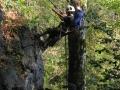 abseilen-bergwacht-aktionstag-260909-in-neureichenau-056.jpg